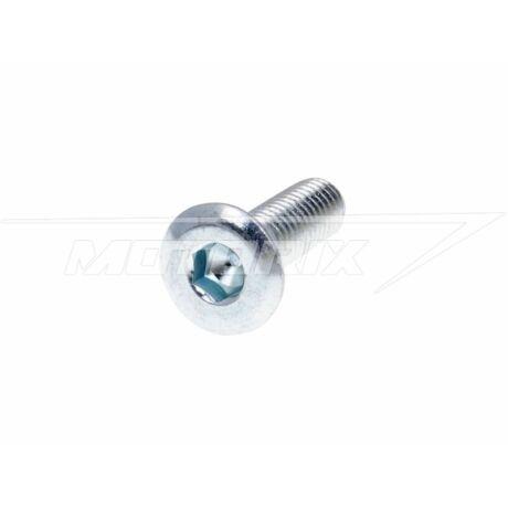 Tárcsafék csavar M8 (10mm-es furatátmérőhöz) 1db 101-Octane