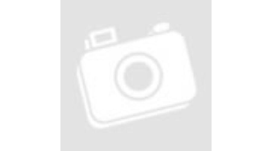 2e5a3920207b Kesztyű protektoros fekete XS Speeds Street Man - Motorix
